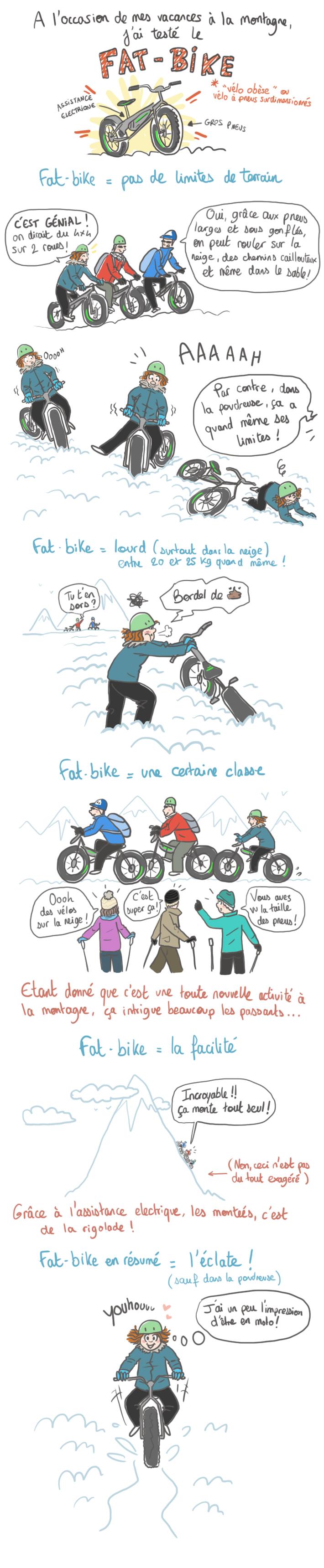 le-fat-bike